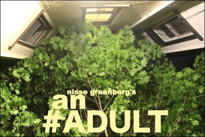 adult4_2